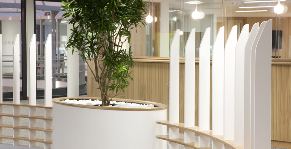 Reception area design with Axis Solutions